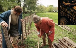 "Peter Ginn makes a wattle fence with a ""Tudor fence expert"" (inset, detail from Robert Campin's Seilern Triptych)"