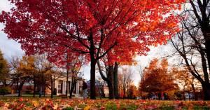 Fall-at-Bates-208k