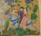 courtly hawking