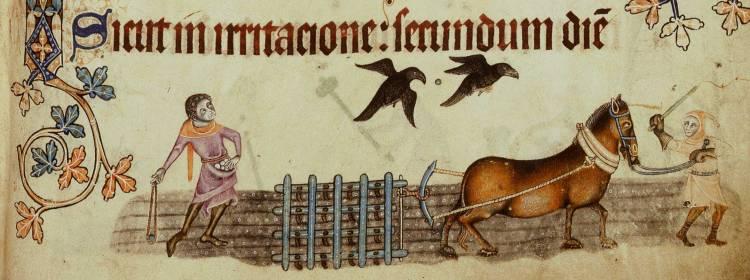 1330-Harrowing-l
